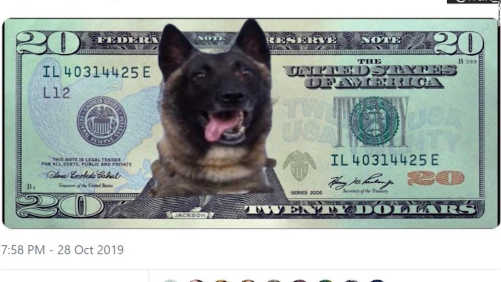 Conoce al perro que persiguió a líder de ISIS