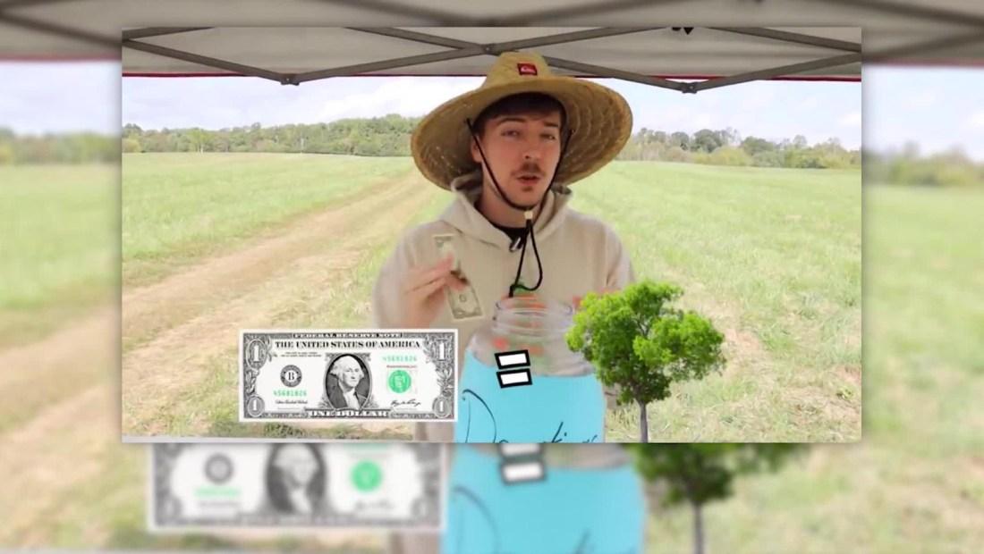 YouTube plantará 20.000.000 de árboles
