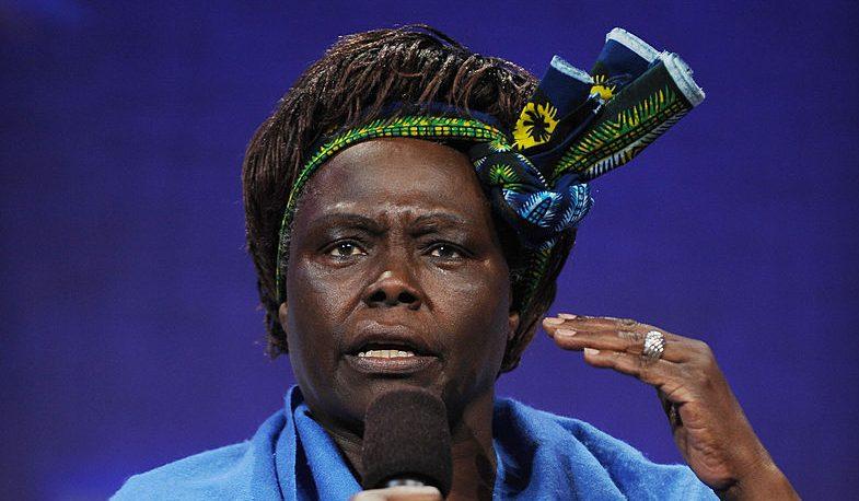 """El Premio Nobel de la Paz 2004, Wangari Muta Maathai: """"Por su contribución al desarrollo sostenible, la democracia y la paz""""."""