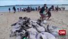 Brasileños limpian derrame de petróleo en sus playas