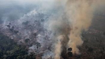 Deforestación Amazonas la más alta en una década