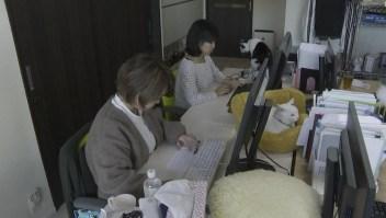 Japón permite llevar mascotas al trabajo
