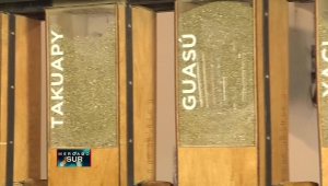 Conoce el mate, la tradicional hierba en Argentina
