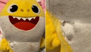 Peluche de Baby Shark salvó a niño de una bala