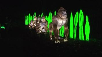 Zoológico del Bronx vuelve a iluminarse esta Navidad