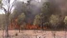 Australia: el día más caluroso en la historia
