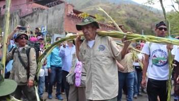 Los palmeros, una tradición venezolana