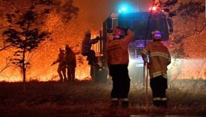 Fuegos en Australia: bomberos bajo asedio, miles de evacuados y huyen los canguros