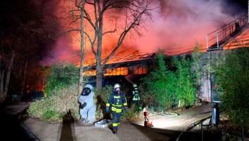 Mueren decenas de animales tras incendio en zoológico
