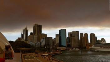 Australia: el área devastada tiene el tamaño de Austria