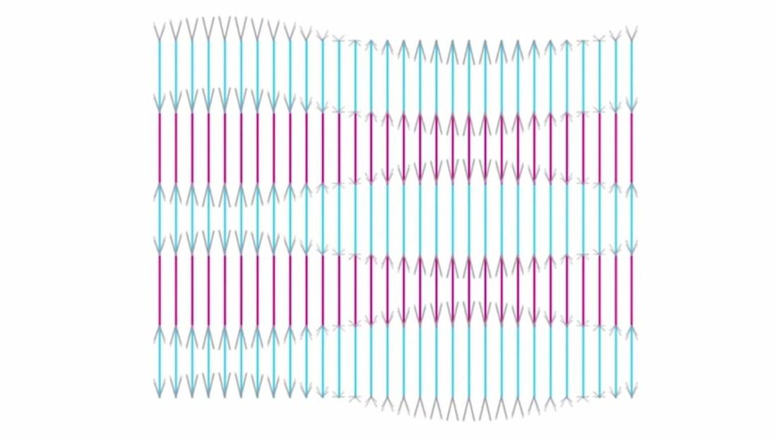 Ilusión óptica viral: ¿se mueven las líneas?