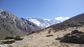 En el Monte Everest las plantas suplantan a la nieve