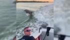 Manada de delfines da un espectáculo a los bomberos