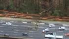 Árbol cae sobre un auto por la fuerte tormenta