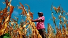 5 cosas para hoy: EE. UU. otorgará visas de trabajo a salvadoreños y más