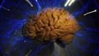 Epilepsia: mitos y verdades de la enfermedad