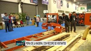 Negocios millonarios del sector maderero en México