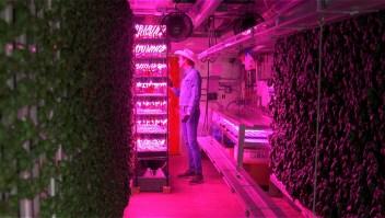 La revolución de alimentos crece en un estacionamiento