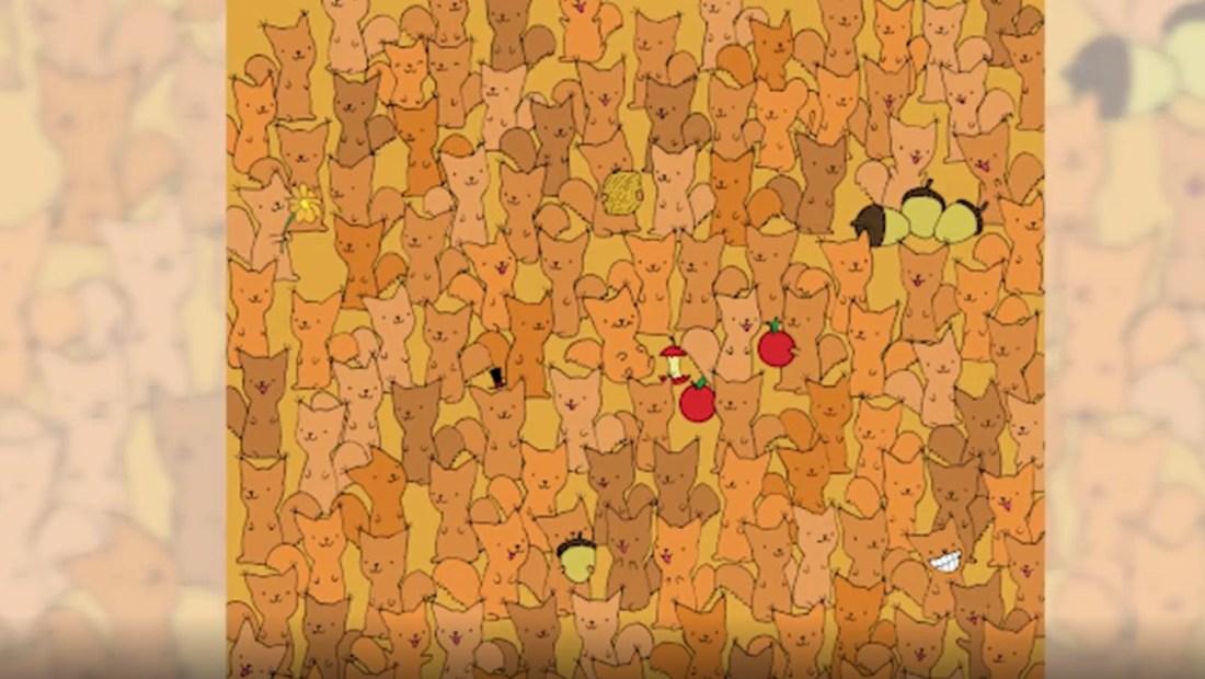 Reto viral: ¿puedes encontrar al ratón entre estas ardillas?