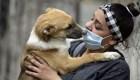 Mitos y realidades sobre las mascotas por el covid-19