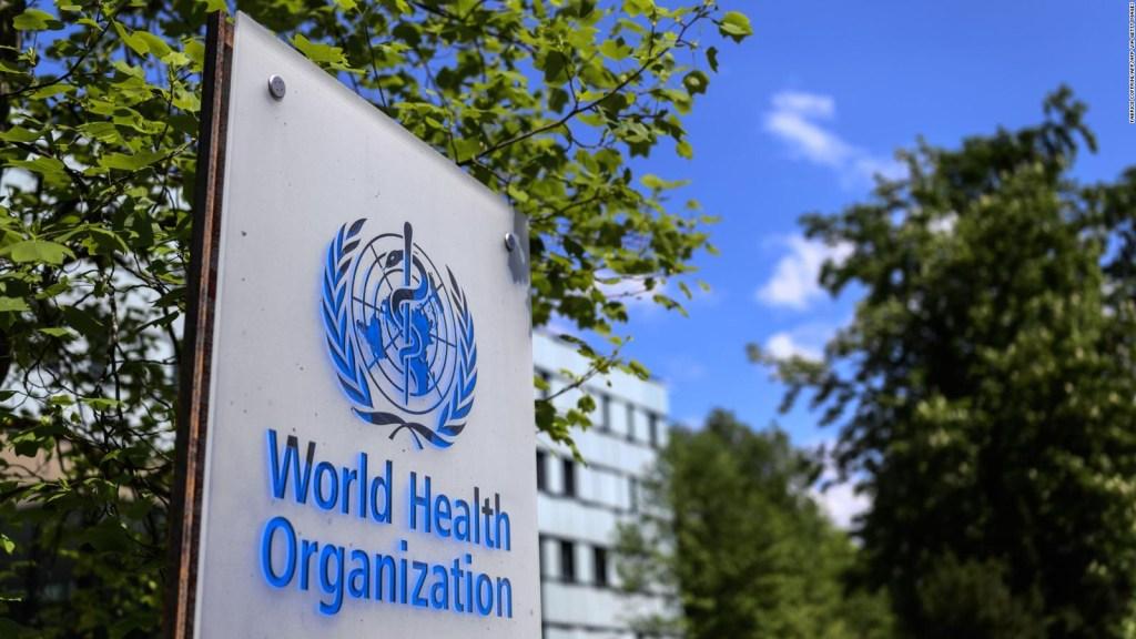 Coronavirus: La OMS plantea equidad al distribuir insumos