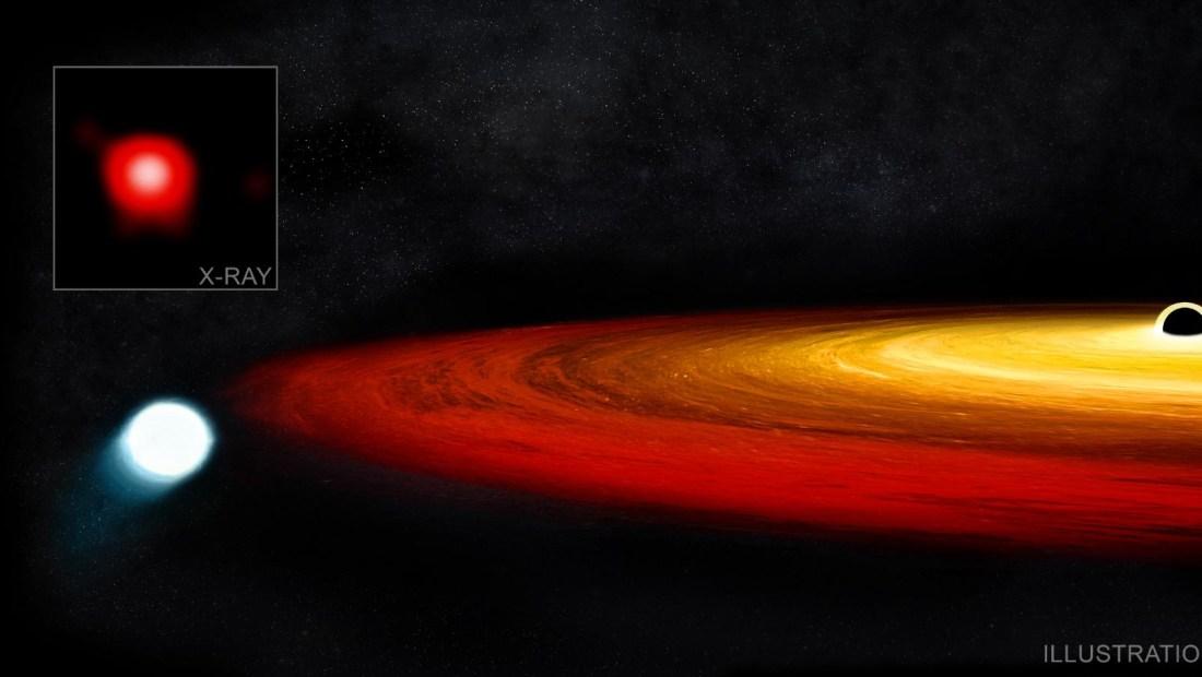 Estrella sobrevive a agujero negro y podría mutar a planeta