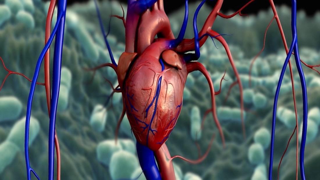 ¿Cuán riesgoso es el covid-19 en pacientes con enfermedades del corazón?