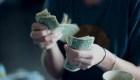 ¿A quiénes dar ingreso básico universal ante la crisis?