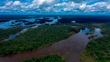 Aumenta la deforestación en la Amazonía