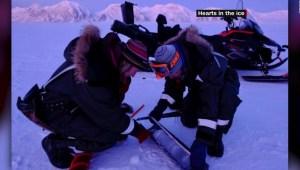 Investigadoras pasan meses en el Ártico debido al coronavirus