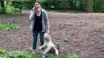 Amy Cooper pide disculpas por discusión en Central Park
