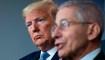 Donald Trump está en disputa abierta con funcionarios de salud mientras el virus arrecia
