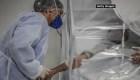 Brasil: más de medio millón de casos de coronavirus