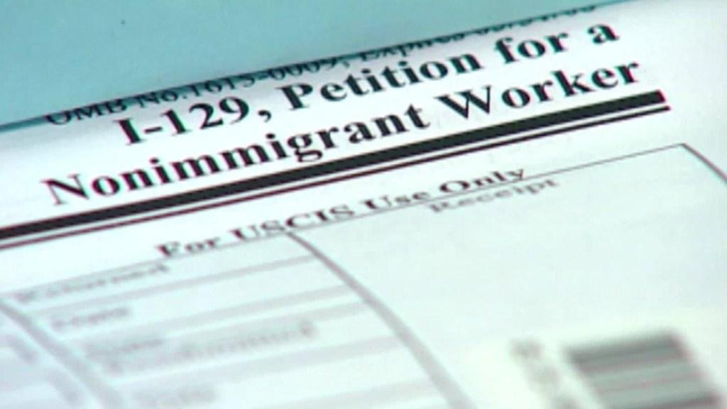 Trump suspendería estas visas por la pandemia