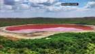 India: el lago Lonar se torna rosado