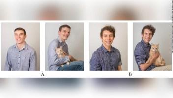 hombres - gatos - citas