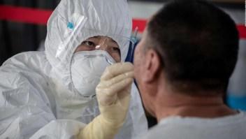 Alerta por nueva gripe porcina descubierta en China