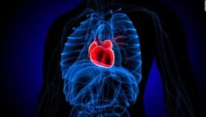corazón síndrome