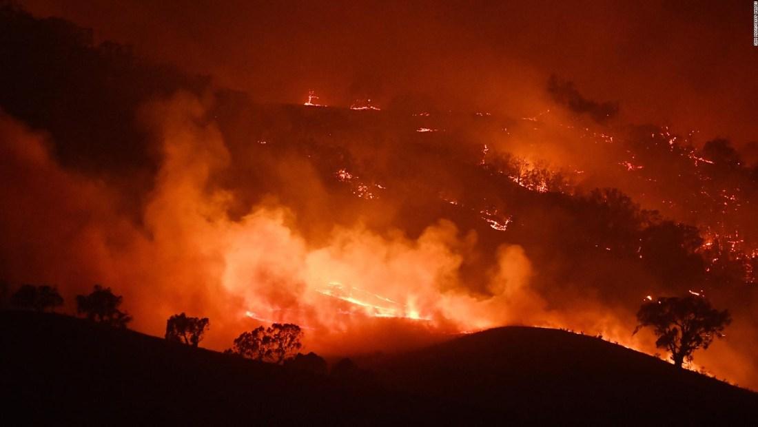 Australia: incendios afecta 3.000 millones de animales