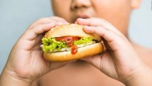 La mala alimentación amenaza a EE.UU., según expertos