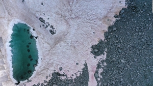 Hay nieve rosa en los Alpes (y no es una buena noticia)