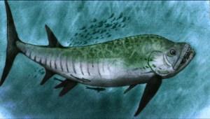 Estudiante lidera investigación del fósil de un temible pez gigante