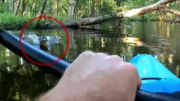 Kayakista tuvo encuentro cercano con un cocodrilo