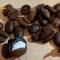 Italia: policía confisca cocaína oculta en granos de café