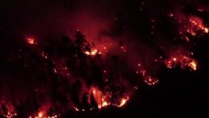Imágenes de los incendios forestales en Rusia