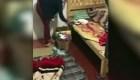México: rescatan a niños obligados a trabajar en la calle