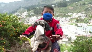 Hablamos con el niño que le pone mascarilla a su perro