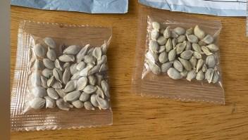 Los 50 estados han emitido advertencias sobre los misteriosos paquetes de semillas.