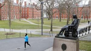Estudiantes internacionales tendrían que irse de EE.UU. si solo tienen clases en línea