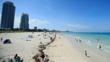 Las 5 cosas que debes saber este 15 de julio: ¿Por qué Florida es el epicentro de la pandemia en EE.UU.?